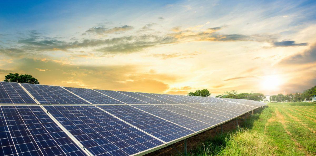 Få medejerskab af solcellepark Høvsøre